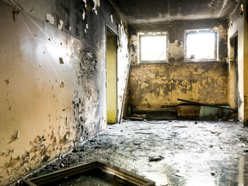 Mold in your home symptoms